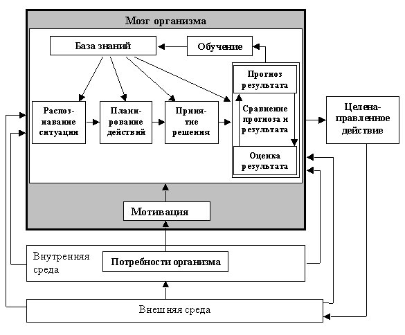 Кибернетическая схема